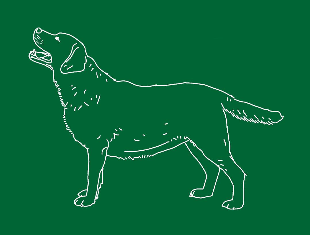 alab dog logo