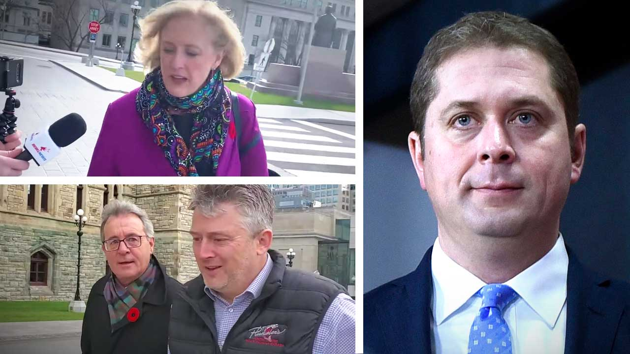 Conservative MPs REACT: From 1-10, how would you rate Andrew Scheer as a leader?
