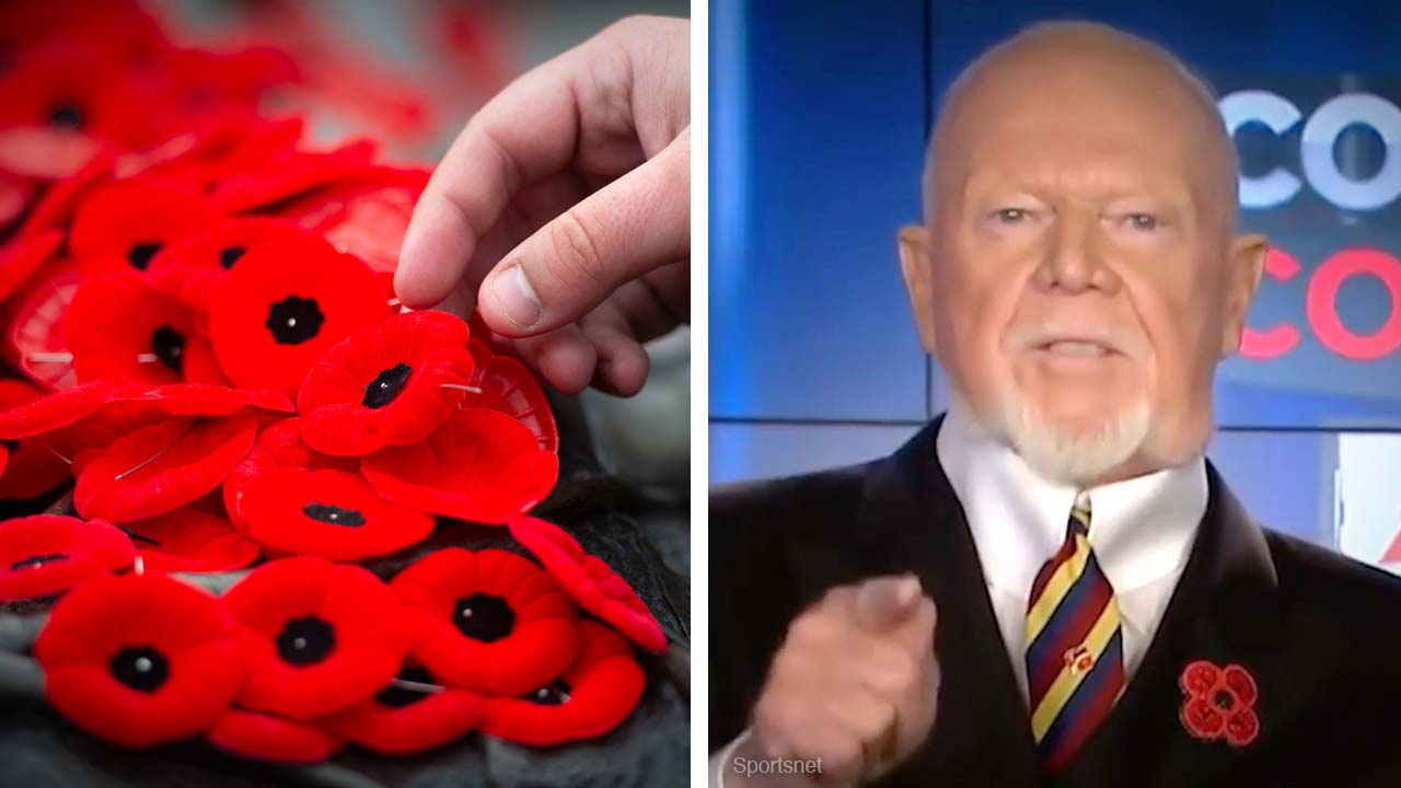 Don Cherry fired for poppy rant: Woke lefties think supporting veterans is fascist
