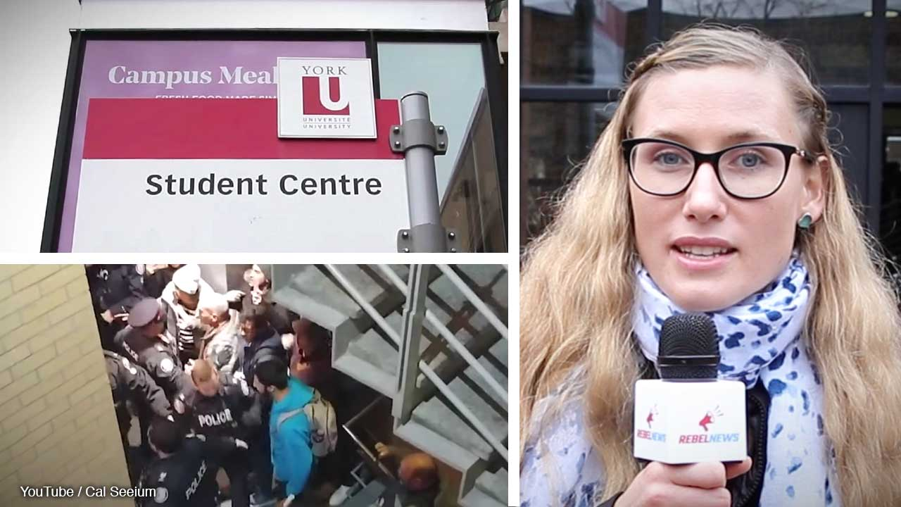 York U students react after pro-Palestinian protesters instigate violent clash at Jewish student  group event