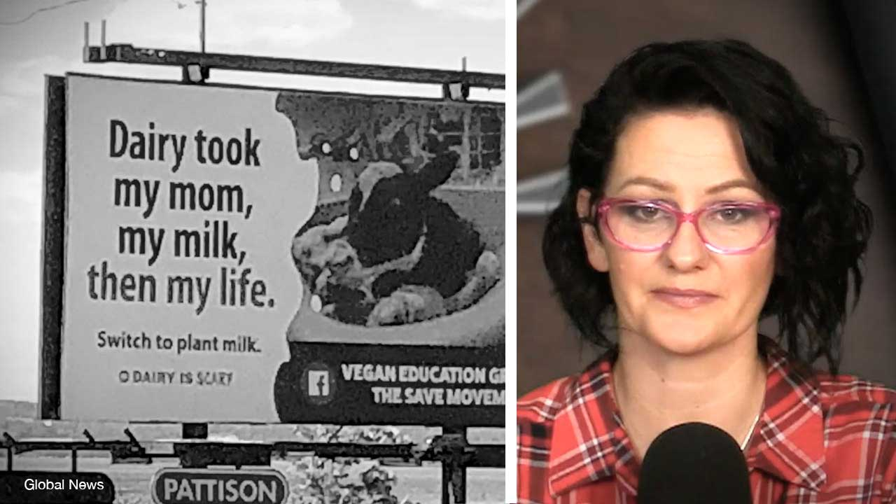 Vegan billboard complaint causes Canadian Food Inspection Agency to admit they can't limit free speech