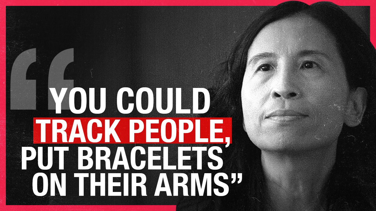 """Dr Theresa Tam in 2010: """"You could track people, put bracelets on their arms…"""" during epidemics"""