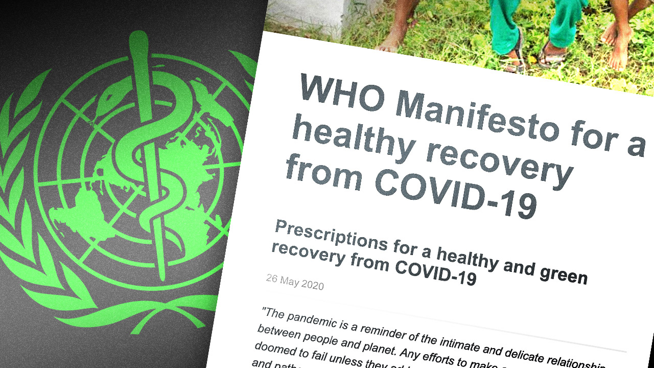 "World Health Org. wants a ""green recovery"" from COVID-19 shutdown"