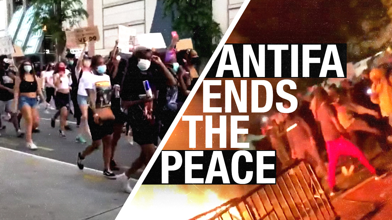 Rebel News in DC: Peaceful protests turned violent AFTER Antifa showed up