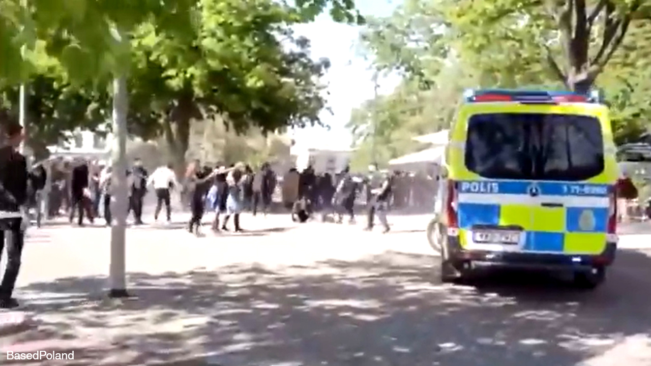 Swedish police unprepared for anti-police riots