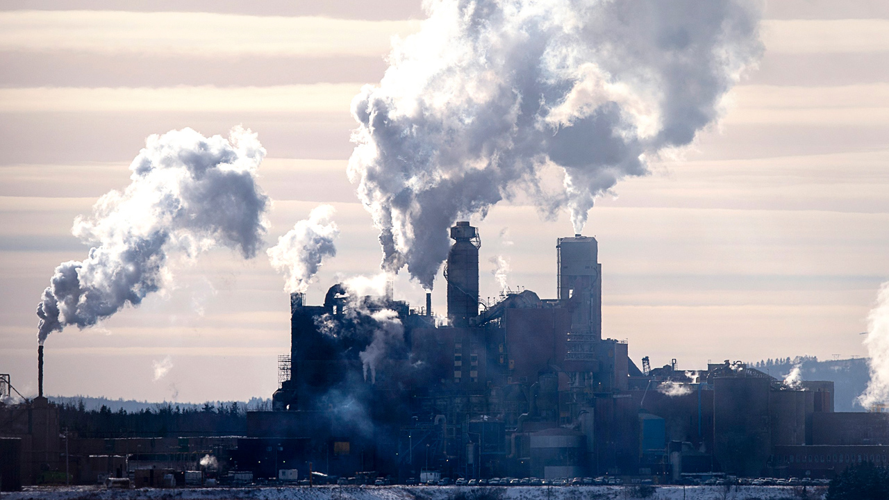 Creditor protection for Nova Scotia pulp mill shut down by activists