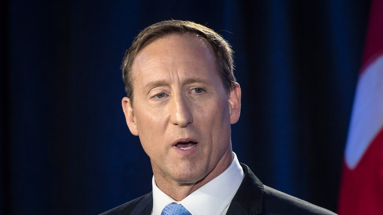 "Peter MacKay attacks Conservatives for ""friendly fire,"" explains 19th century poem in new essay"