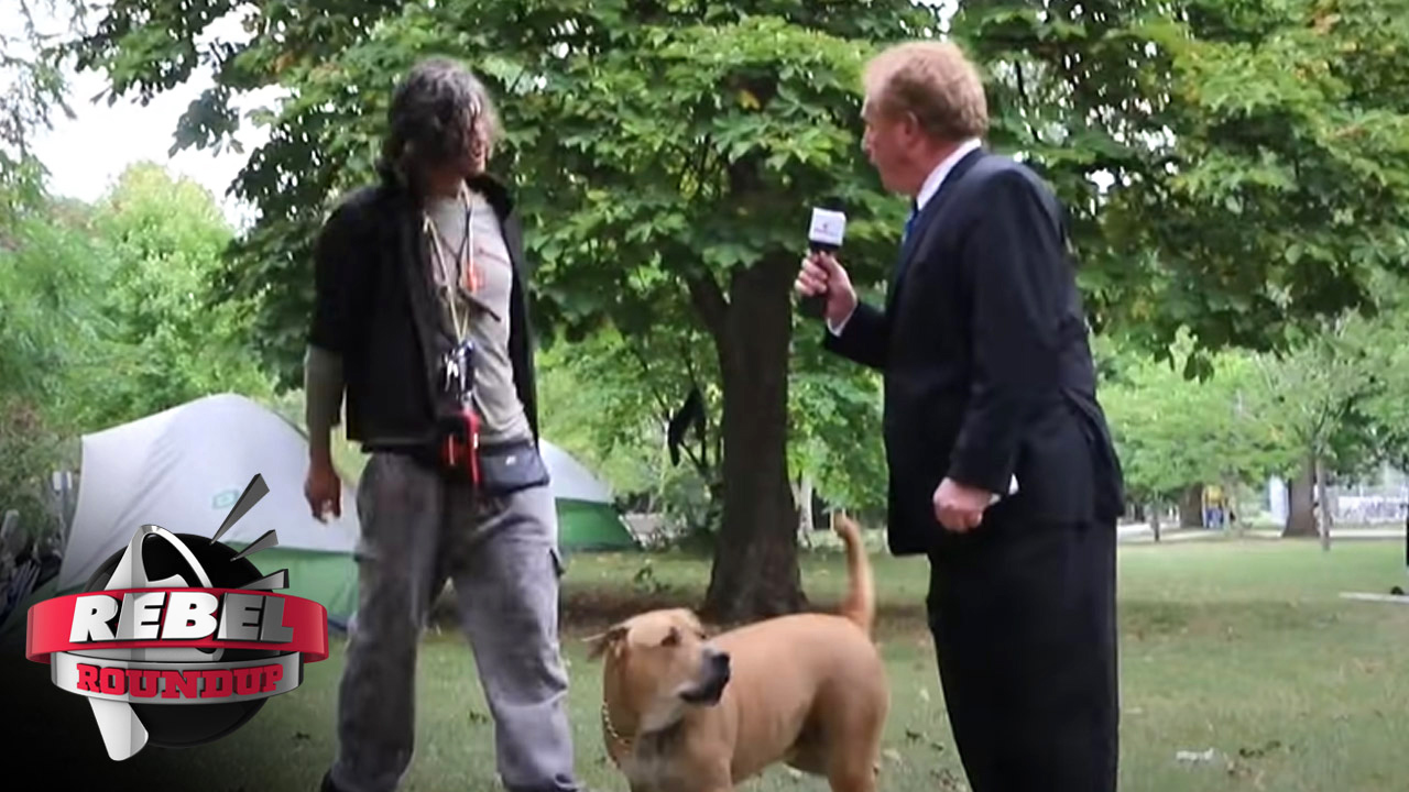 Toronto tent city visit ends with dog attacking reporter — viewers respond!
