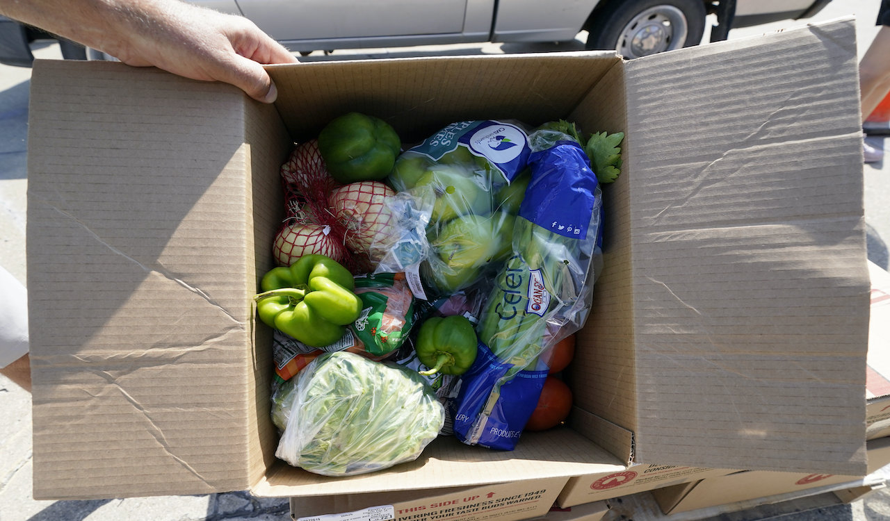 City shuts down Ottawa food drive, citing COVID restrictions