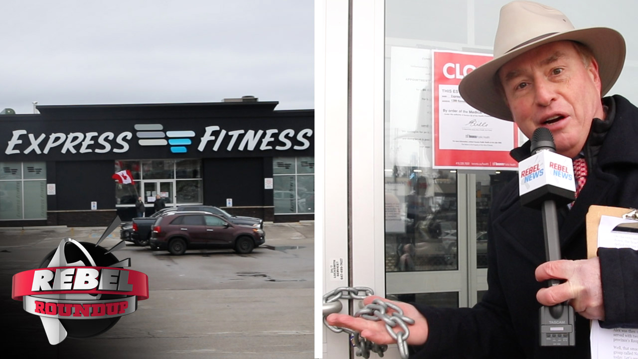 VIEWERS RESPOND: Police horses on call at Toronto gym re-opening