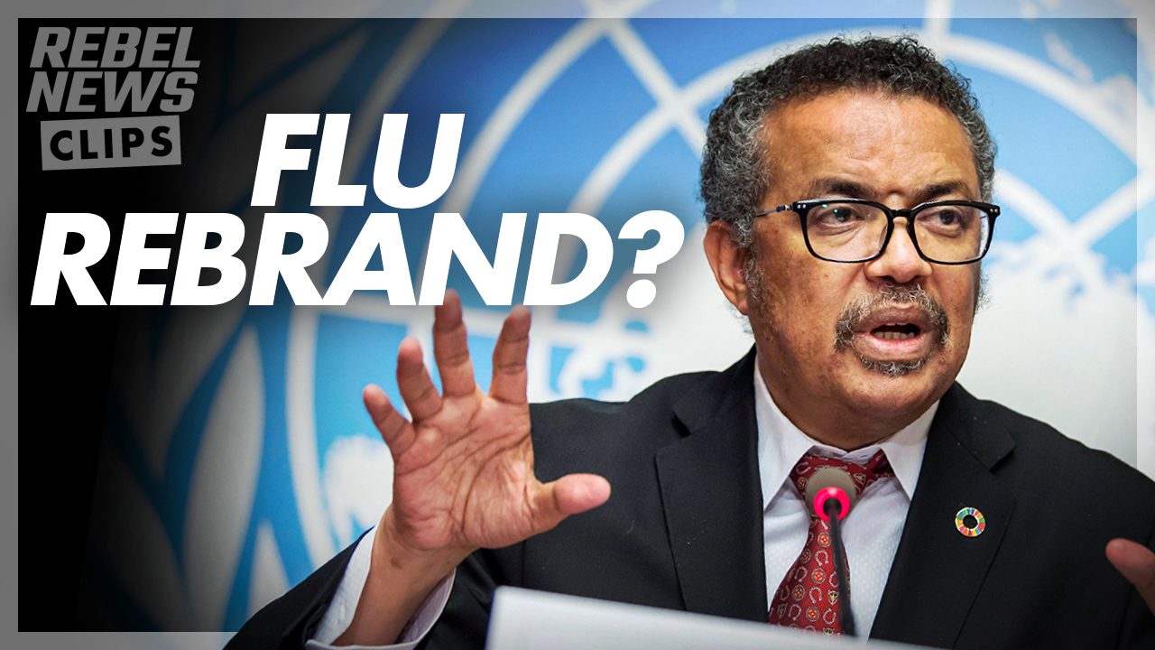 SUCCESS: the flu doesn't really exist anymore, according to the WHO
