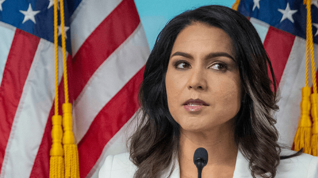 "Democrats trying to undermine constitutional freedoms are more dangerous ""domestic enemies"" than Capitol mob, says Tulsi Gabbard"