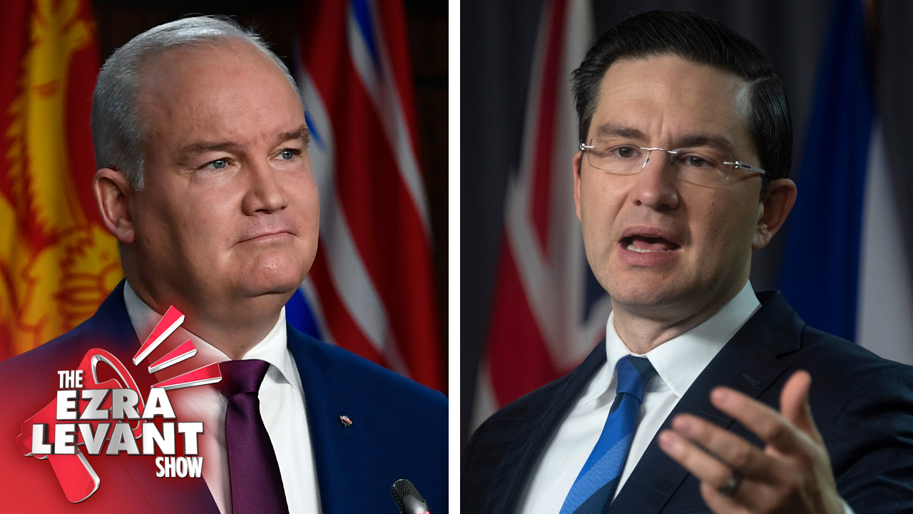 Why did Erin O'Toole fire Pierre Poilievre as his finance critic?