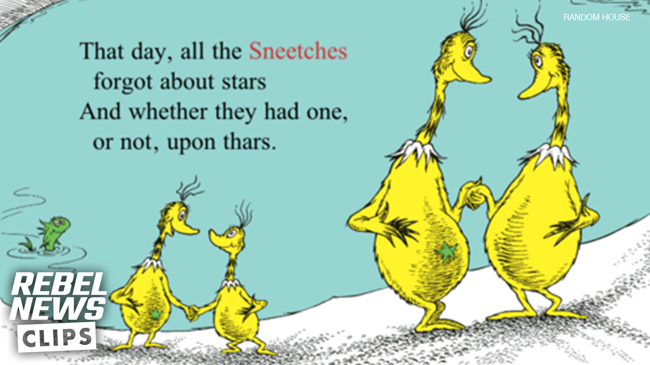 Dr. Seuss and the best anti-racism allegory for kids