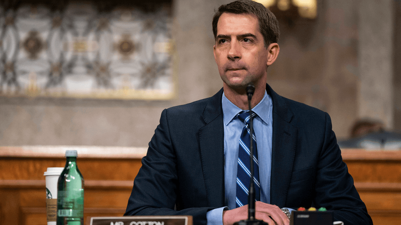 "Tom Cotton sparks backlash for saying America has ""major under-incarceration problem"" amid massive surge in crime"