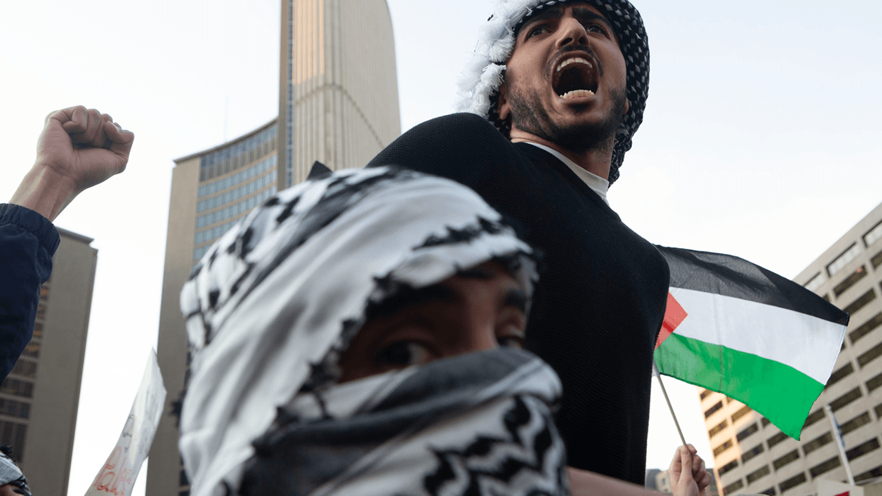 """Black Lives Matter declares """"solidarity with Palestinians"""""""
