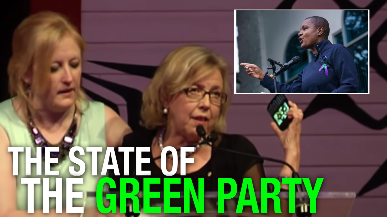 Green Party suffering from identity crisis over new leader's beliefs