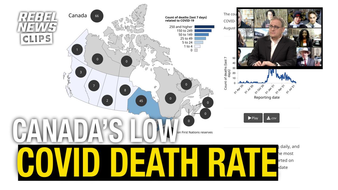 Recent statistics show COVID death numbers plummeting across Canada