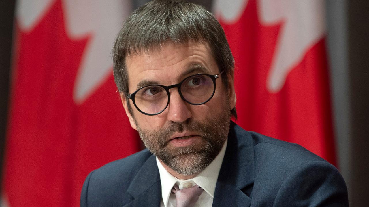 Liberal platform promises new legislation to combat