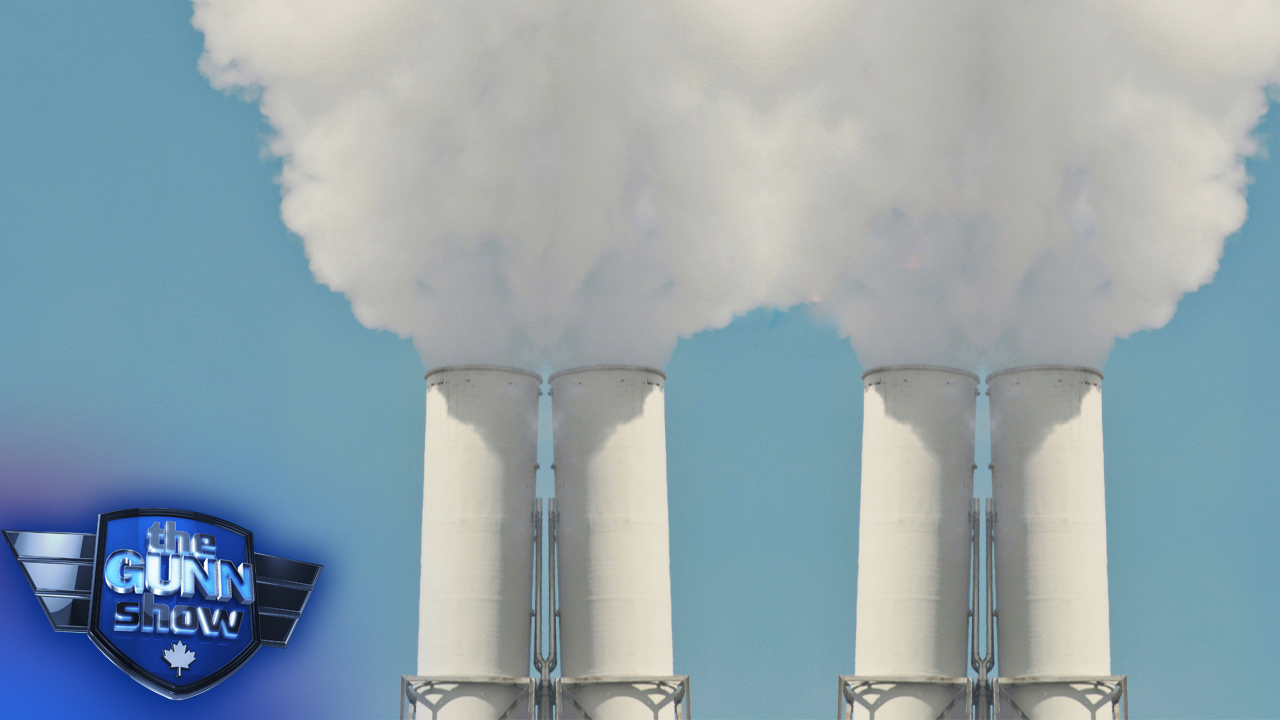 The connection between immigration and emissions | Michelle Stirling on green energy