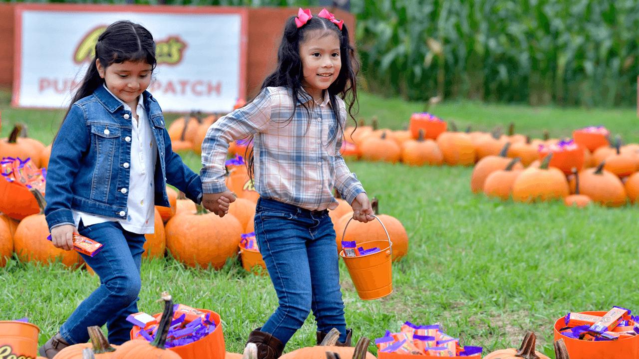 Seattle school cancels Halloween costume parade