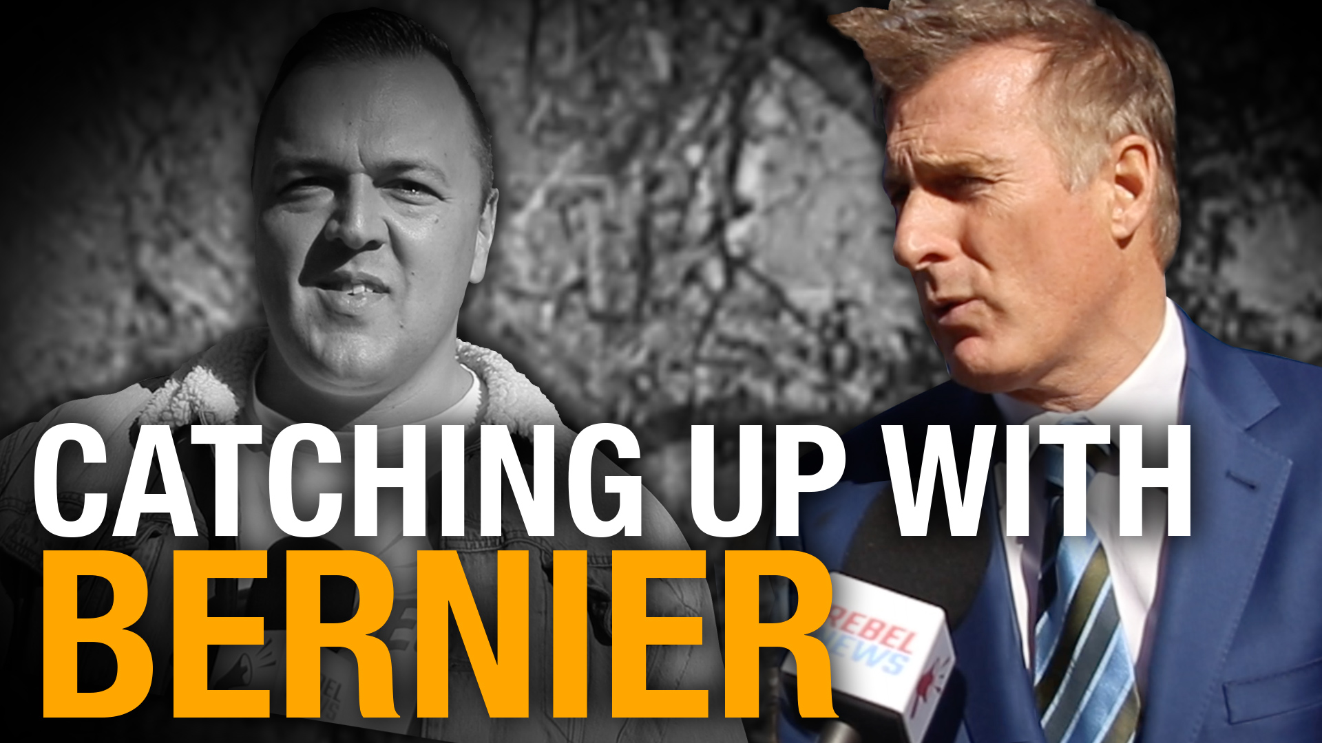 Maxime Bernier: PPC candidates ready to get back to work with the party