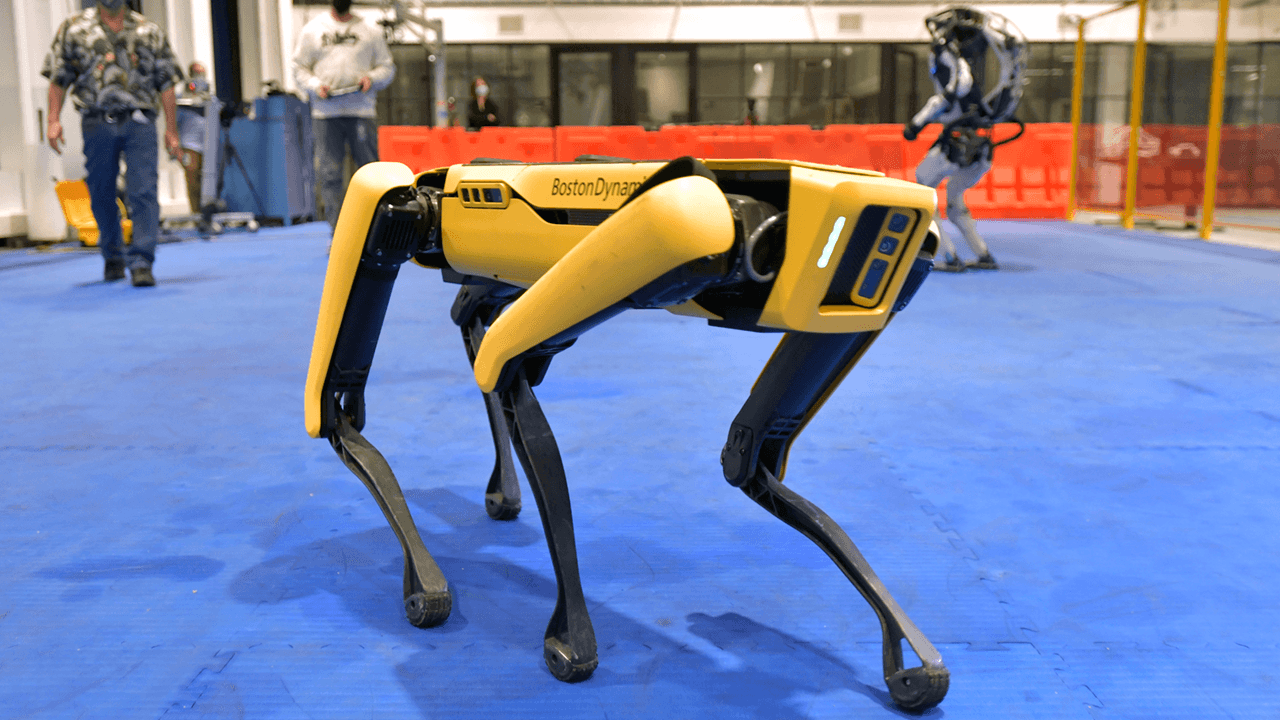 Robot dog to monitor Hawaii's homeless for COVID symptoms