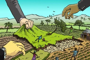 The Future of Farmland (Part 1): The New Land Grab