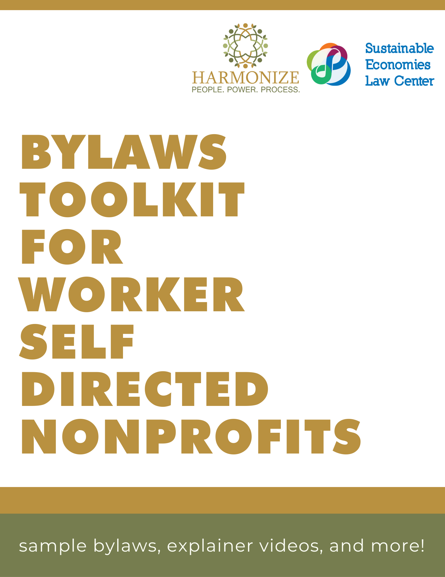 Bylaws Toolkit for WSDNs
