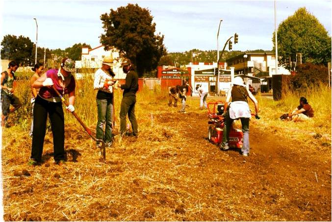 Image_from_OccupyTheFarm_GillTract_Albany_CA.jpg