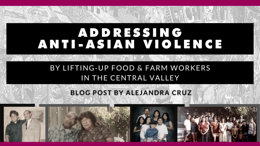 Alejandra blog banner