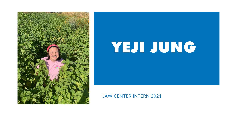 Yeji Jung banner