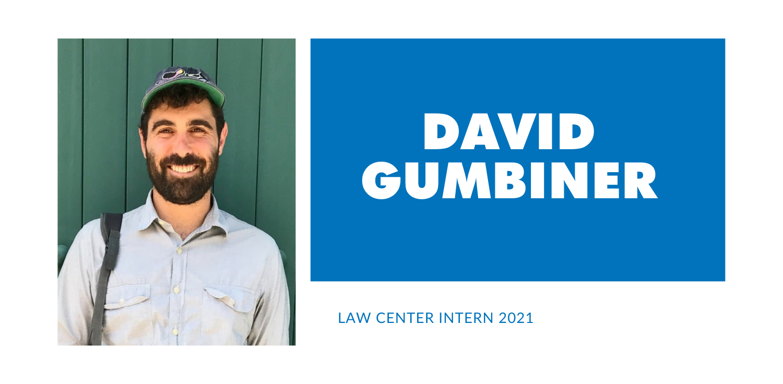 David Gumbiner banner