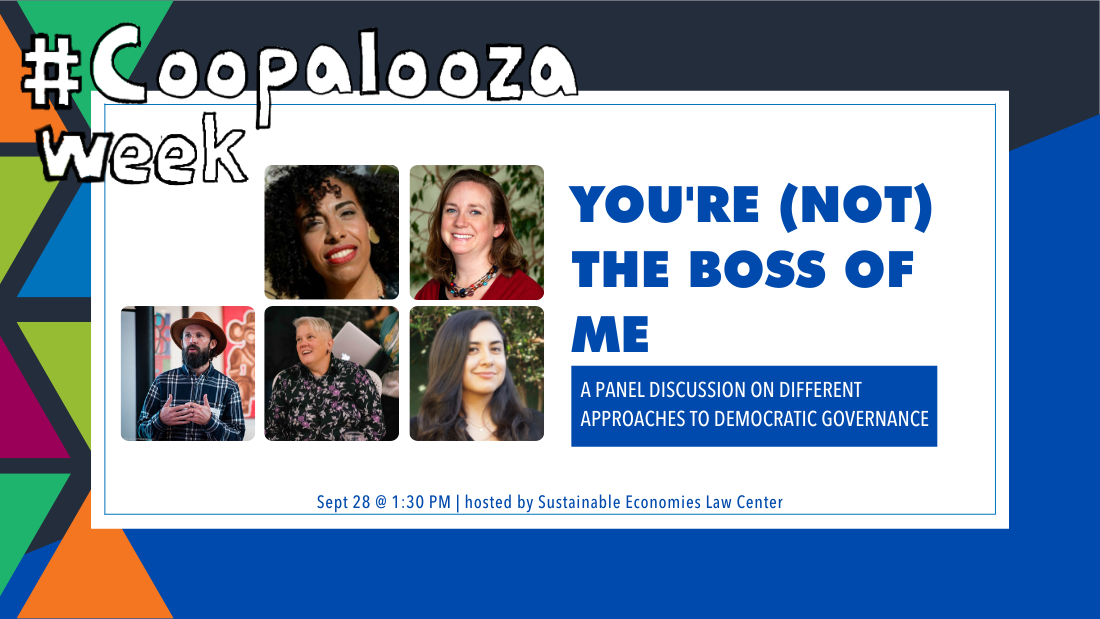 You're (not) the boss of me: A panel discussion on different approaches to shared leadership
