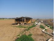 fresno-farm-shed.png