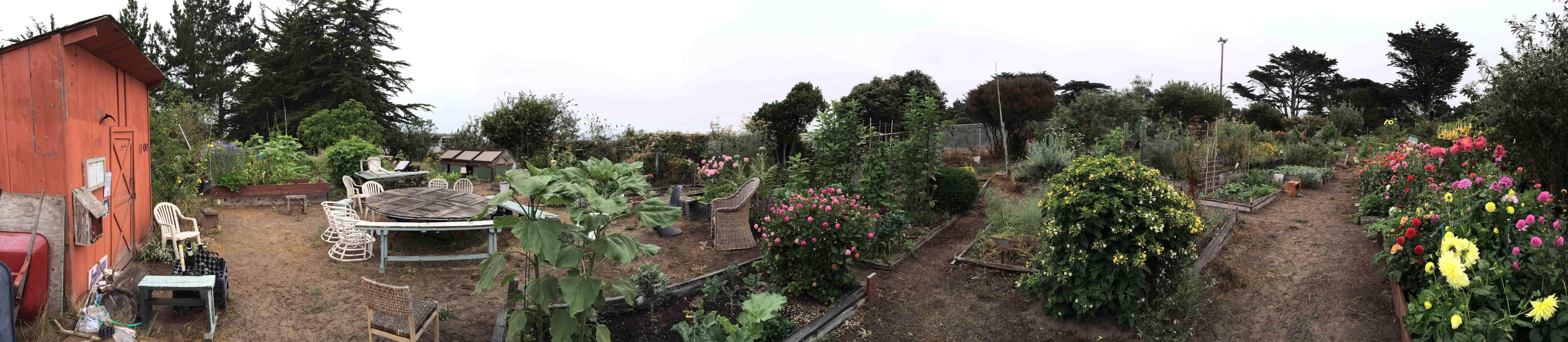 Sunset_Community_Garden_Pano_(Small).jpg
