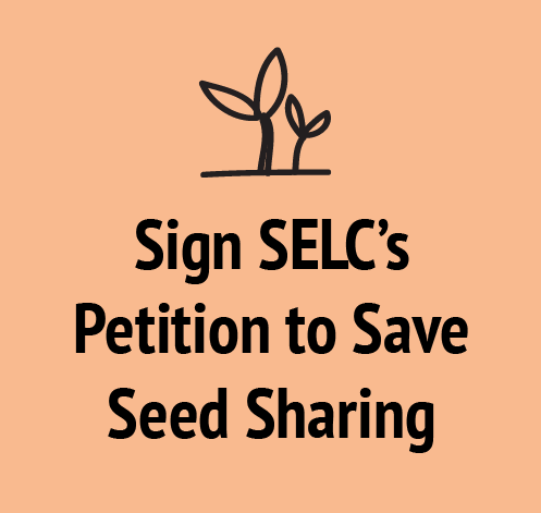 SELC makes laws! You make laws! We all make laws!