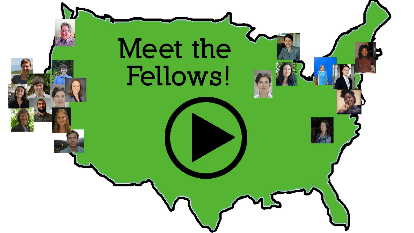 Meet the Fellows