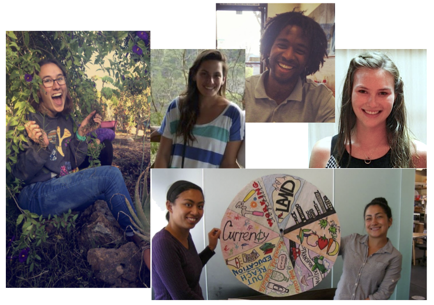 Some of our amazing past interns!