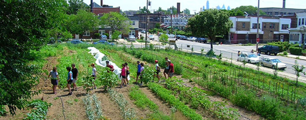 Accessibility and urban growing spaces