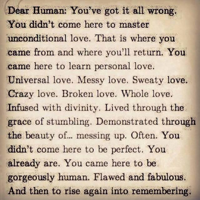 dear_human.jpg