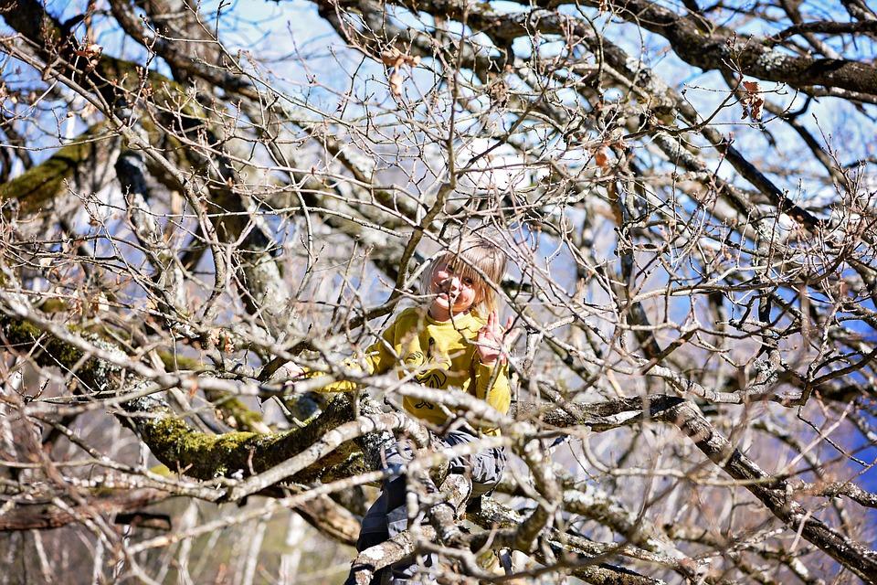 child-731540_960_720.jpg