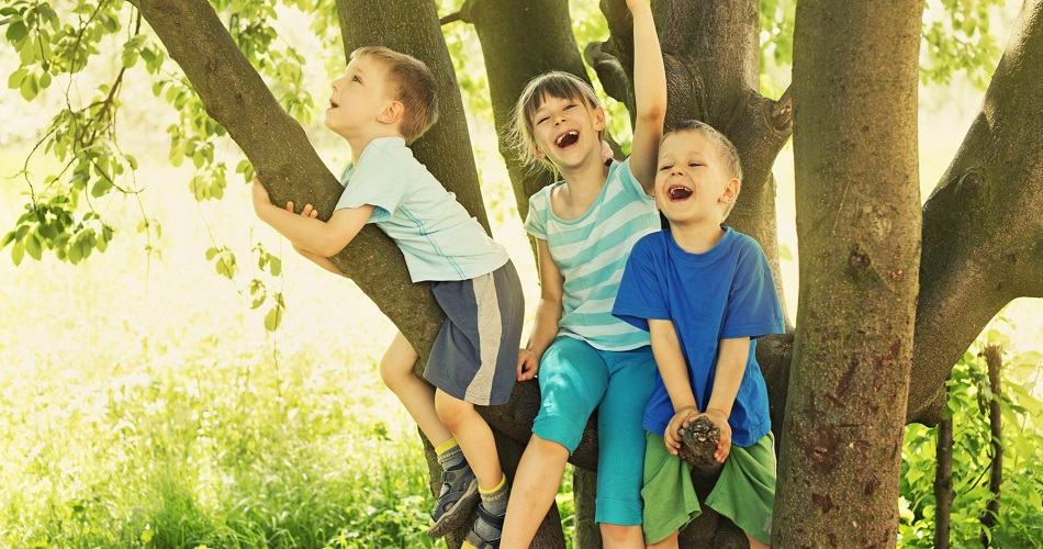 happy children laughing in tree