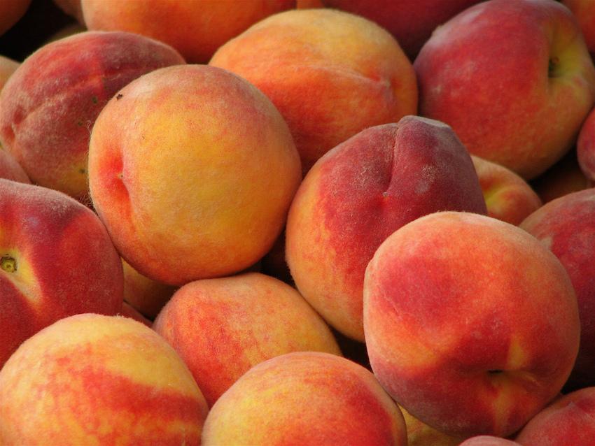 Peach Pancakes Comic