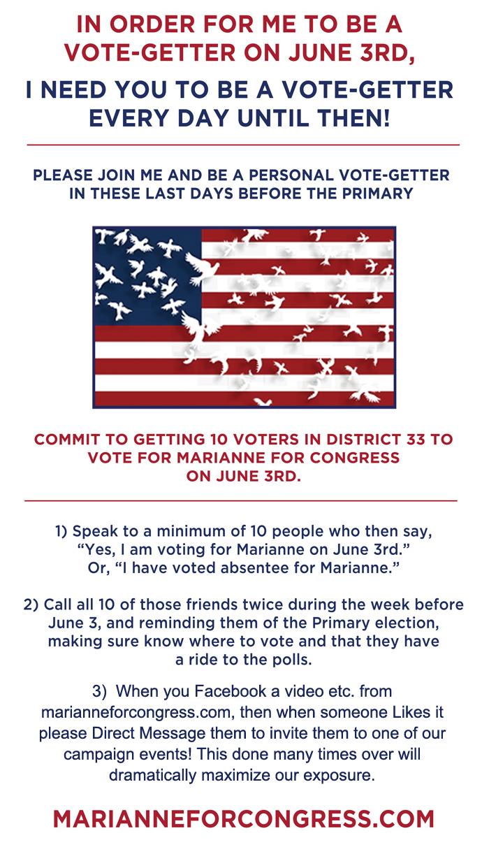 votegetter-3.jpg