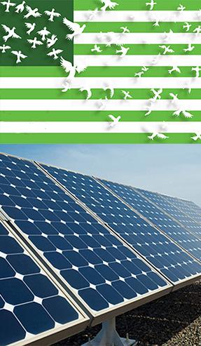 green-panel-image.jpg