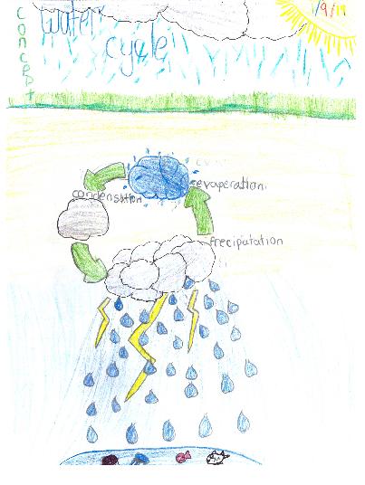 nancy_water_cycle.png