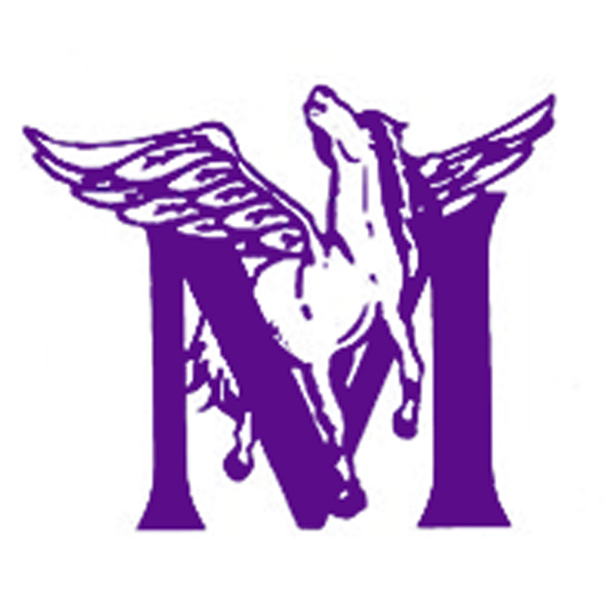 purple_logo1.jpg