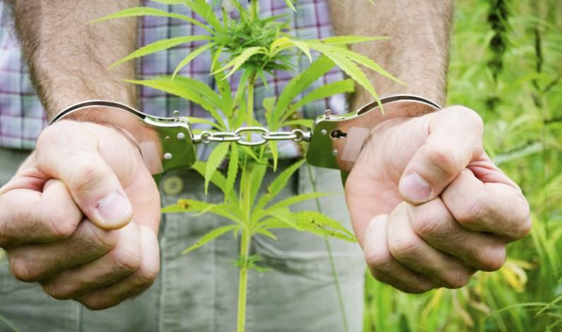 cuffs-for-cannabis-marijuana-handcuff.jpg