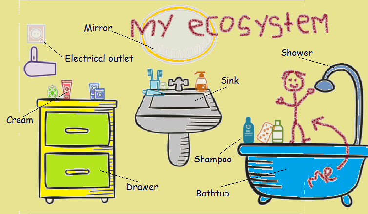 bathroom_ecosystem.png